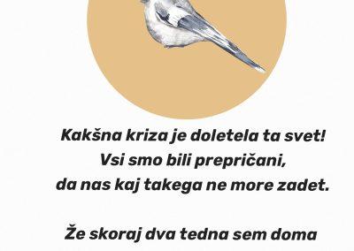 Vitan Špoljarič